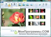 Windows Live Movie Maker скриншот 4