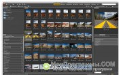 Скриншот Adobe Bridge