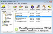 Internet Download Manager скриншот 2