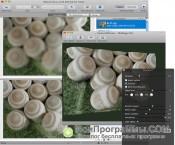 Helicon Focus скриншот 3