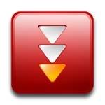 Программа для загрузки видео FlashGet