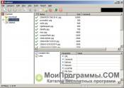 FlashGet скриншот 3