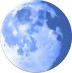 Pale moon 2014