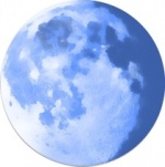 Pale Moon для Windows 8.1