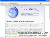 Pale Moon скриншот 1