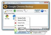Скриншот Google Chrome Backup