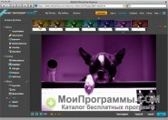 Adobe Photoshop скриншот 1