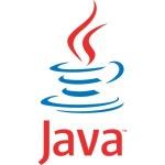 Java 8.25
