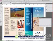 Adobe InDesign скриншот 4