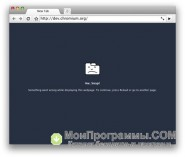 Google Chrome для iPad скриншот 3
