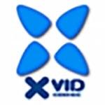 Кодек для декодирования видео Xvid