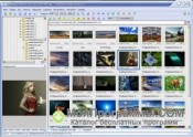 Faststone Image Viewer скриншот 1
