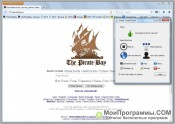 PirateBrowser скриншот 1