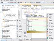 Database.NET скриншот 1