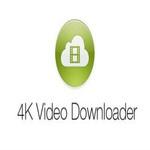 Программа для скачивания мультимедийного контента 4K Video Downloader