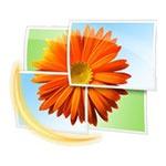 Программа для работы с данными видеокамер Windows Live Photo Gallery
