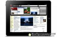 Opera для iPad скриншот 2