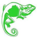 Chameleon Window Manager