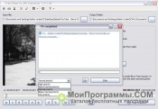 Free Video to JPG Converter скриншот 3