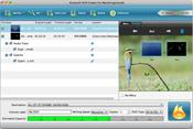 Aiseesoft DVD Creator скриншот 1