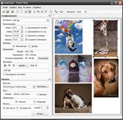 Photo Print Pilot скриншот 1