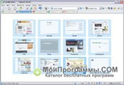 GreenBrowser скриншот 1