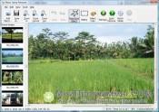 Скриншот Photo Stamp Remover