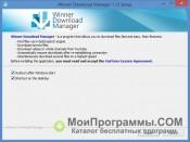 Winner Download Manager скриншот 3