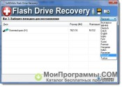 USB Flash Drive Recovery скриншот 1