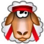Программа для обработки дубликатов файлов Duplicate file remover